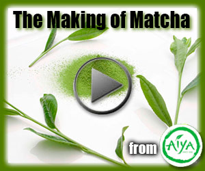 Aiya Matcha Video