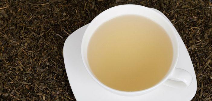 Tea Tutorial: A Beginner's Guide to White Tea