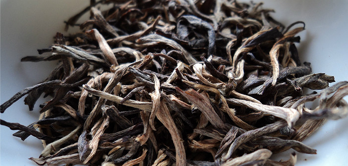 A Beginner's Guide to Yellow Tea
