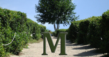 Letter M tea terminology FEATURE