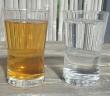 Kombucha in a Glass